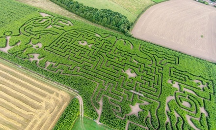 Maze Entry for One, Two or Family of Four at Maize Maze (Up to 42% Off)